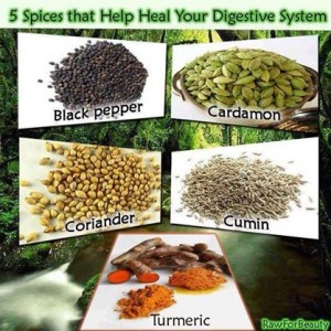Heal Digestive System